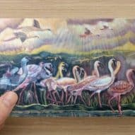 Flamingos general greeting card