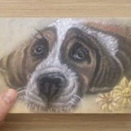 General greeting card of a dog