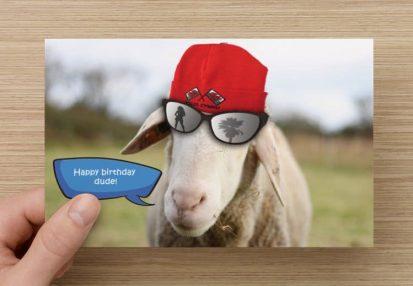 Welsh sheep card