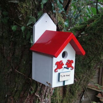 welsh bird feeder. welsh gifts for her.