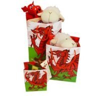 Welsh gift bags. Welsh dragon. Welsh flag. Welsh gifts bags in three sizes.