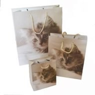 Cat gift bags in three sizes. The perfect gift bag for your Welsh gifts.