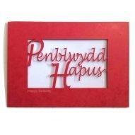Red Welsh birthday card Penblwydd Hapus