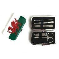 Welsh flag manicure set