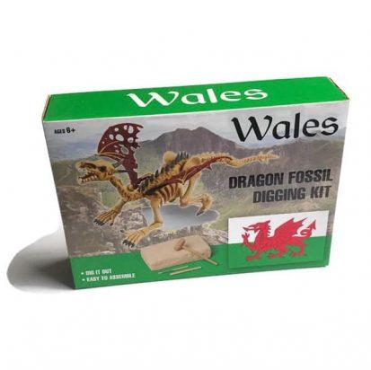 welsh dragon fossil kit welsh toys