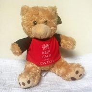 cwtch teddy bear